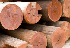 Red wood material Royalty Free Stock Photography