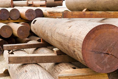 Red wood material Stock Images