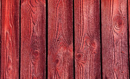 Red wood texture. With natural patterns Stock Images