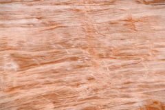 Red wood Stock Photography