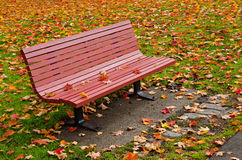 Red bench and autumn leaves Stock Image