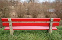 A red wooden bench. A red bench and willow trees in the background Stock Photography