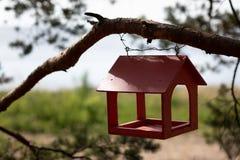 Red wooden bird feeder. A wooden bird feeder on a tree in a summer park stock image