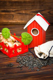 Red wooden bird house with seed Royalty Free Stock Photo