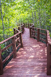Red wooden bridge Royalty Free Stock Photos