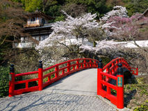 Red wooden bridge near Minoh waterfall. Red wooden bridge and traditional old building on the mountain side with spring cherry blossoms near the famous Minoh stock photo