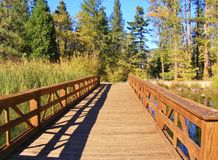RED WOODEN BRIDGE TO THE FOREST Royalty Free Stock Photography