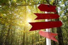 Red wooden directional arrow signs in green forest. Background with trees stock photography