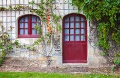 Red wooden door, window and green plant Stock Image