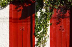 Red wooden doors and white wall partly covered with green twiner Royalty Free Stock Photo
