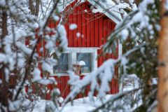 Red wooden finnish house in the forest. Royalty Free Stock Images