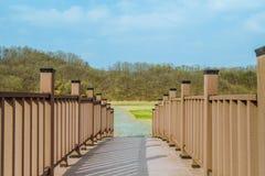 Wooden foot bridge under blue sky Stock Photo