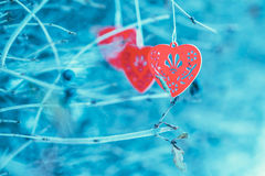 Red wooden hearts on the branch Stock Images