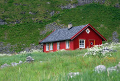 Red wooden house. The red wooden house on green meadow Stock Images