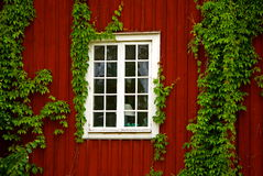 Red wooden house stock images