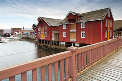 Red wooden houses in Norwegian village. Red wooden houses in small Norwegian fishing village royalty free stock photo
