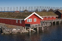 Red wooden houses on rocky island. Norway. Rural Norwegian landscape, traditional red wooden houses on rocky island. Ringholmen, Norway Stock Image