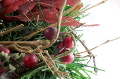 Red wooden nuts and tree. Red wooden fruits for any christmas layouts Stock Images