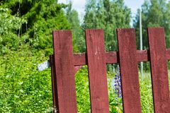 Red Wooden Painted Fence. Red Painted Fence with Green Shrubbery and Bushes Behind Stock Photo