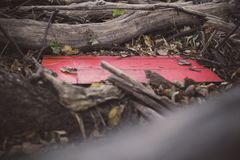 A Red Wooden Plank Nestled Among Fallen Trees in Jester Park, Iowa stock image