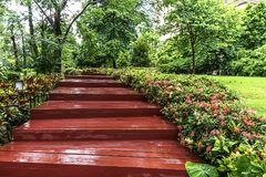 Red wooden steps after rain strom. In zhujiang newtown of guangzhou china Royalty Free Stock Image