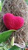 Red wool heart on the hay bird nest Stock Photo