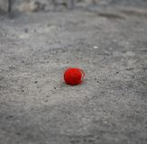 Red woolen ball lies on the gray asphalt Stock Photos