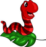 Red worm cartoon Royalty Free Stock Image