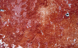 Red worn plaster Stock Image