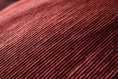 Red woven fabric closeup Royalty Free Stock Images