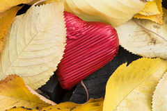 Red wrapped heart and autumn leafs Royalty Free Stock Photography