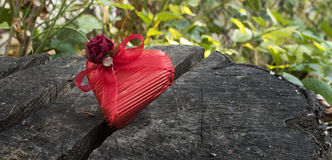 Red wrapped heart Stock Photos
