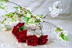 Red wreath with cherry blossom. Flower crown Stock Images