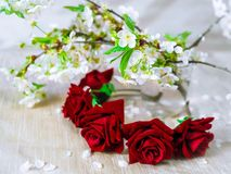 Red wreath with cherry blossom. Flower crown Royalty Free Stock Photography