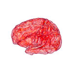Red x-ray of human brain Stock Image