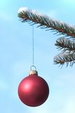 Red xmas ball. Red christmas ball hanging on a snow covered tree. Focus on the ball Royalty Free Stock Photos