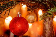 Red Xmas ball on a Christmas tree. With shiny lights Royalty Free Stock Photos