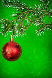 Red xmas ball on fir tree. Beautiful red Christmas ball hanging on green fir tree Stock Images