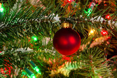 Red Xmas ornament hanging on fir tree with glowing lights and snow Royalty Free Stock Photography