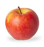 Red and yellow apple Royalty Free Stock Photo