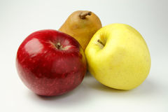 Red and yellow apple and pear Royalty Free Stock Image