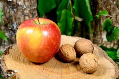 Red and yellow apple on a piece of wood Stock Photo