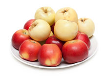Red and yellow apple on plate Royalty Free Stock Photo