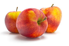 Red and yellow apples Royalty Free Stock Photo