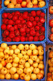 Red and Yellow apples in boxes royalty free stock photography