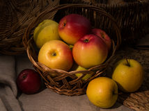 Red and yellow apples. Illuminated by the sun lying in a basketn Royalty Free Stock Image