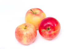 Red yellow apples on a white background Royalty Free Stock Photos