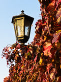 Red and yellow autumn leaves by the lantern at Kalemegdan fortress walls Stock Photo