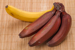 Red and yellow bananas Stock Image