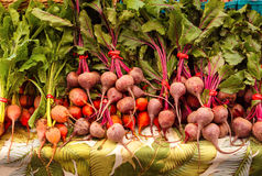 Red and Yellow Beets Stock Photography